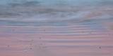 Dusk colours, Croajingolong National Park
