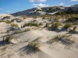 Dunes, Cape Howe