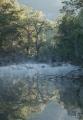 Morning mist, Capertee River