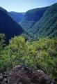 Colo River Gorge