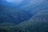 Bowens Creek valley I