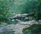 Rock slab and creek
