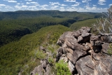 Above Wollangambe Gorge